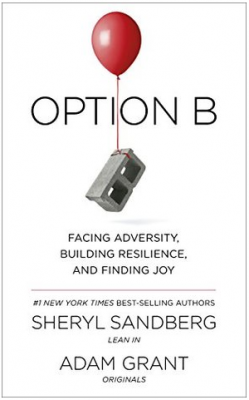 Option B Sandberg Grant