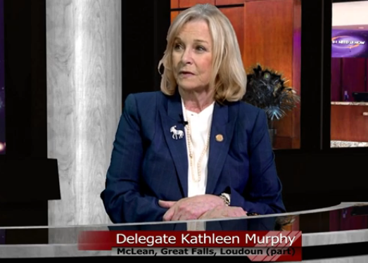 Delegate Kathleen Murphy on Your Need to Know